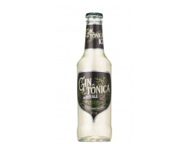GIN TONICA ICE DUROYALE 275ML 6UN