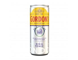 BAM GORDONS TONIC 269 ML CX 06UN